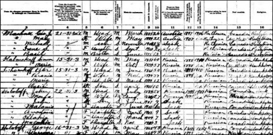 1911 census sample